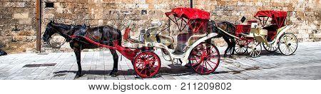 Majorca Spain. A horse carriage near an old building wall of The Cathedral of Santa Maria of Palma de Majorca Spain