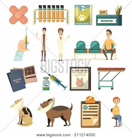 Compulsory vaccination orthogonal icons set with hand holdinig syringe pets patients medical assistaants vet isolated vector illustration