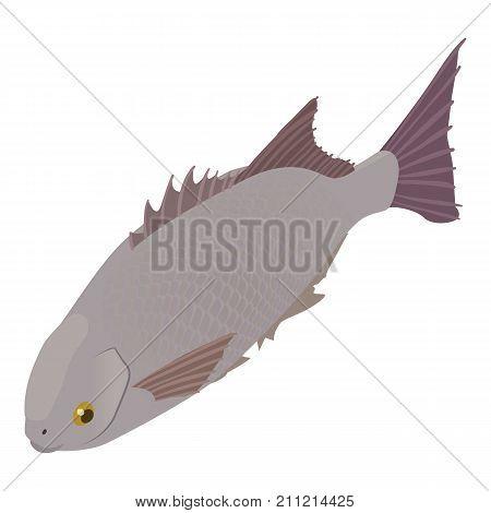 Ocean fish icon. Isometric illustration of ocean fish vector icon for web