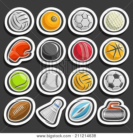 Vector set of Sports Ball, collection of sporting and gaming equipment, ball of different kinds of sports, boxing glove, ice hockey puck, badminton shuttlecock, curling stone on black background.