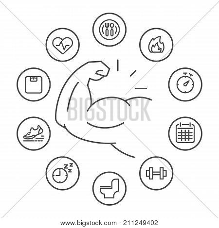 Simple rounded line icons set. Strategies for Weight Loss Obesity concept Healthy and lifestyle concept. Vector line icon