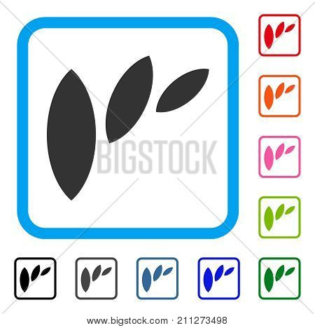 Flora Leaf Abstraction icon. Flat grey pictogram symbol in a blue rounded frame. Black, gray, green, blue, red, orange color additional versions of Flora Leaf Abstraction vector.