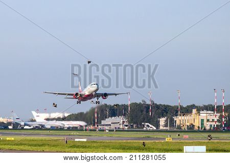 MOSCOW - JULY 22 2017: The plane is taking off at the Vnukovo airport (Moscow). Birds near the runway. Blurred planes in the background