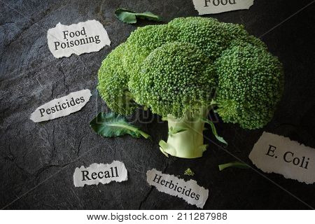 Broccoli with various food safety related news headlines