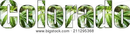 Colorado Marijuana Logo High Quality Stock Photo