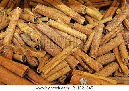 Many cinnamon sticks. Background of cinnamon sticks.
