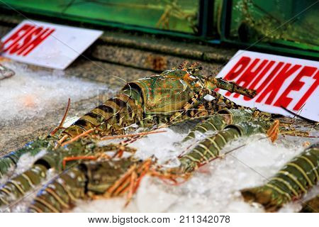 Lobster on the tray with ice. Seafood for sale. A seafood restaurant. Marine living on the streets of Asian cities. Fresh seafood.