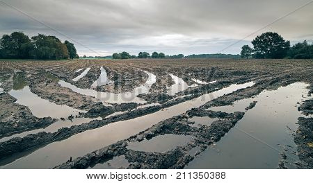 Tire Tracks With Rainwater In Arable Field Under Dark Cloudy Sky