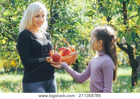 a beautiful mother helps to the daughter the beautiful apple