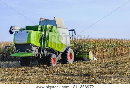Combine harvester in action when harvesting and chopping the cutting maize on a large Dutch plot. The combine harvester first stores the chopped corn and then unloads it in an agricultural car.