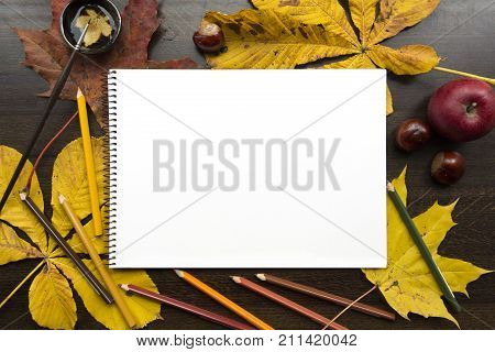 Autumn composition on dark surface with blank sketchbook and fallen leaves