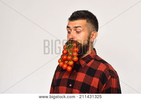Man Holds Tomato Berries As Beard Isolated On White Background