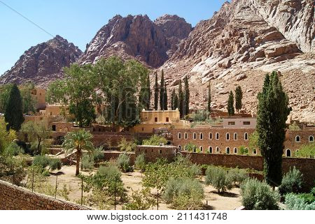 Garden of Saint Catherine's Monastery in the desert on the Sinai Peninsula Egypt - one of the oldest working Christian monasteries in the world - against the background of sun-burned lifeless rocks