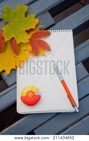 Autumn school composition. Yellow fallen leaves laying on blank sketchbook with orange eraser and pencil on grey bench