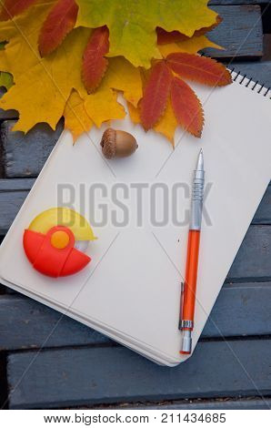 Autumn composition. Blank notepad orange pencil eraser and yellow green red fallen leaves acorn laying on grey wooden background. Top view
