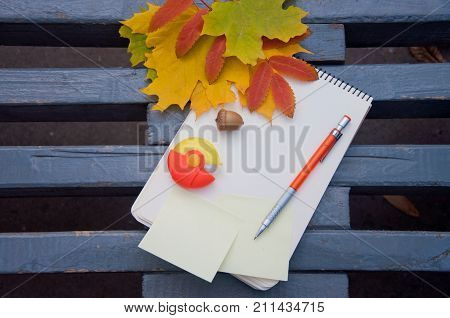 Notebook pen eraser brown acorn and yellow green red dry autumn leaves lay on grey bench background