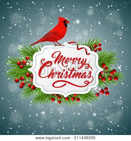 Vector Christmas banner with red cardinal bird, fir branch and greeting inscription. Merry Christmas lettering