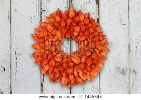 Autumnal Decoration Wreath with Physalis on grunge background