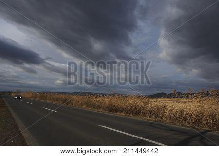 Reeds Along The Road Under Cloudy Sky. Autumn Landscape