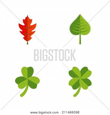 Flat Icon Maple Set Of Hickory, Frond, Leaf And Other Vector Objects