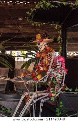 Flower and skeleton alter at Dia de los Muertos Day of the dead.