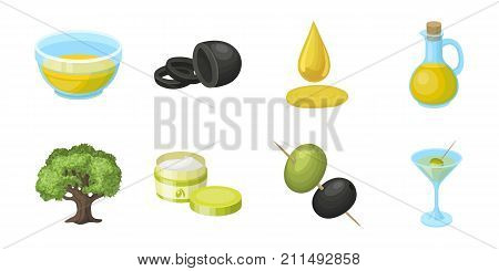 Olive, food icons in set collection for design. Olive oil, seasoning vector symbol stock  illustration.