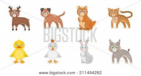 Toy animals icons in set collection for design. Bird, predator and herbivore vector symbol stock  illustration.