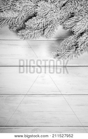 branch of Christmas tree on a wooden board