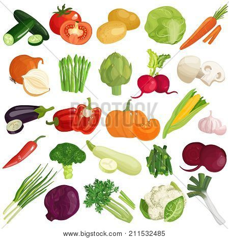 Vegetables icons set with pumpkin, cabbage, tomato, artichoke, carrot, spring onion, zucchini and mushrooms isolated vector illustration