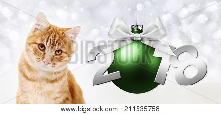 ginger cat and green christmas ball with ribbon bow and silver 2018 text
