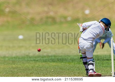 Cricket Juniors Fielder Batsman Action