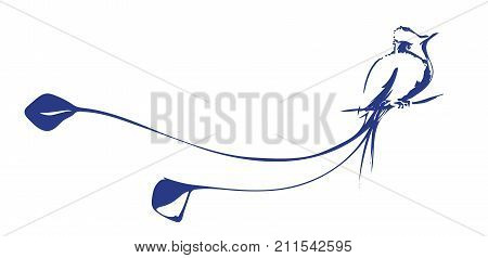 Vector image of colibri. Hummingbird with a beautiful long tail. Hand drawn decorative bird.