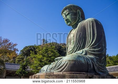 Giant Daibutsu Stands On Kotokuin Temple ,  Location   Kamakura  ,japan  :23 October 2017