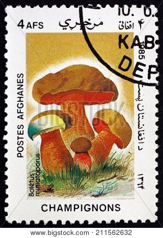 AFGHANISTAN - CIRCA 1985: a stamp printed in Afghanistan shows boletus miniatoporus mushroom circa 1985