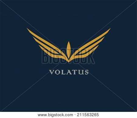 Abstract flower, wings vector logo . Delivery, business, cargo, success, money, deal contract team cooperation symbol icon Corporate financial sign
