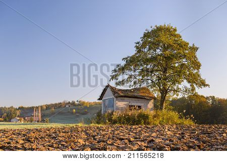 Abandoned shack, barn in the field at sunrise with tree next to it, roof already collapsing, windoes are broken