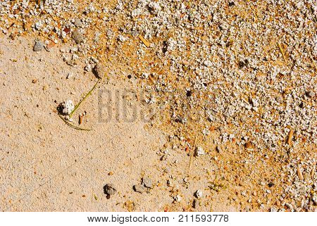 Sand Texture. Brown Sand. Background From Sand. Sand Background