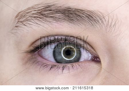A human eye is gray-blue with a reflection of a light ring in the pupil.