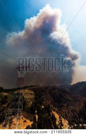 Forest Fire Near Coimbra, Portugal