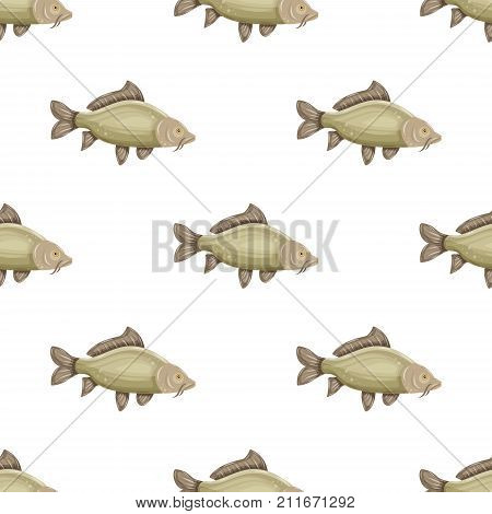 Seamless pattern with common carp isolated on white background. Fresh raw fish - vector illustration. Design element for print.