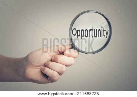 Searching for opportunity. Conceptual image of job opportunities.