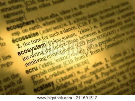 CLECKHEATON, WEST YORKSHIRE, UK: CLOSE UP OF DICTIONARY PAGE SHOWING DEFINITION OF THE WORD ECOSYSTEM 3RD AUGUST 2004 CLECKHEATON, WEST YORKSHIRE, UK
