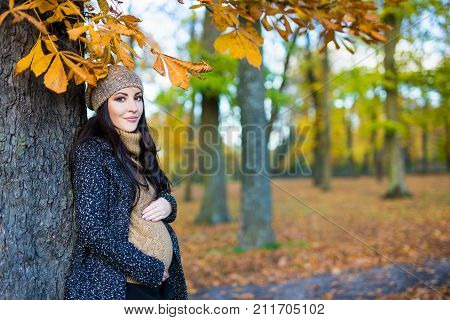 Portrait Of Beautiful Pregnant Woman In Autumn Forest