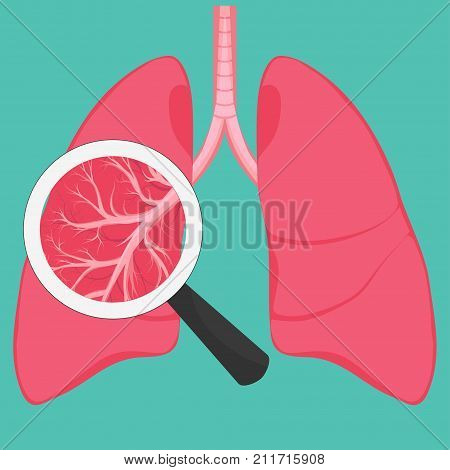 Human Lungs with magnifying glass, anatomy diagram. Illness respiratory cancer graphics. Vector