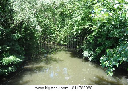 Enclosed pond of green up a stream in Flanders