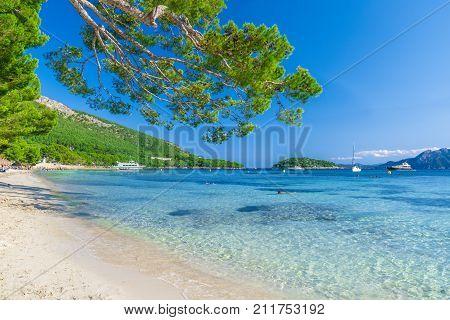 Playa de Formentor (Cala Pi de la Posada ) beautiful beach at Cap Formentor Palma Mallorca Spain