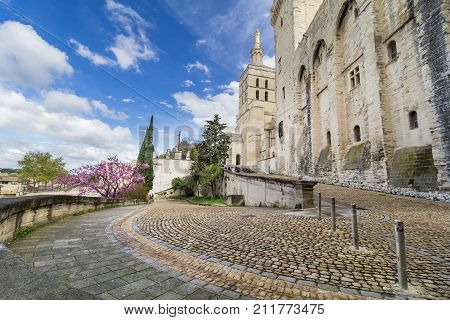AVIGNON, FRANCE - APRIL 2, 2017: Palais des Papes Papal Palace in Avignon, Southern France
