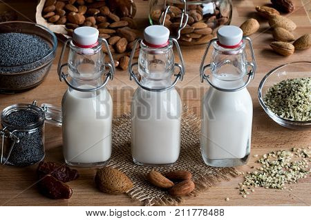 Vegan Plant Milks - Almond Milk, Poppy Seed Milk And Hemp Seed Milk