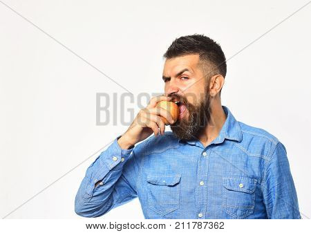 Gardening And Fall Crops. Man With Beard Eats Red Fruit