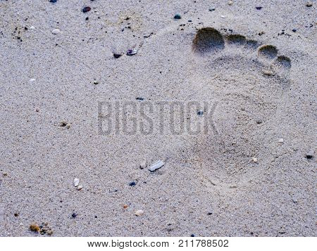the footprint on sand at the beach